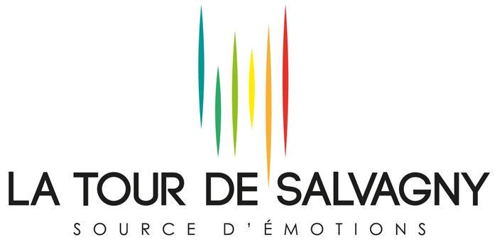 """Résultat de recherche d'images pour """"logo la tour de salvagny"""""""
